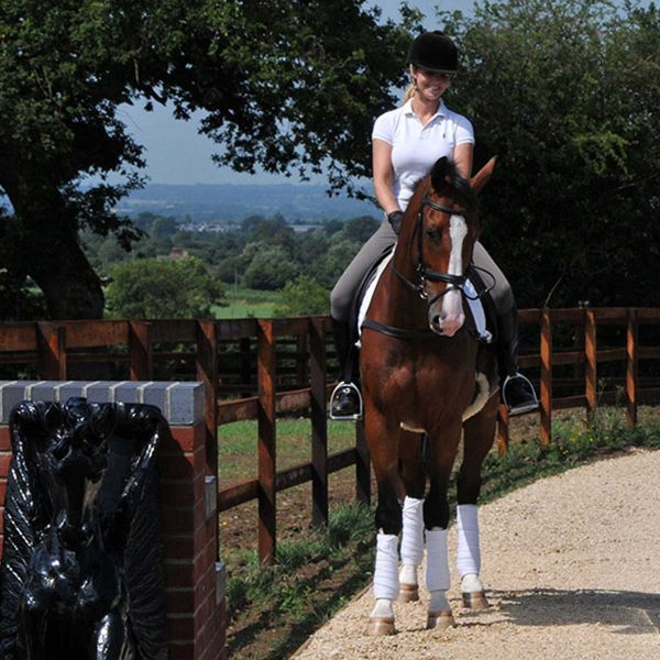 Equestrian Heights driveway